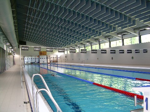 Psv Masters Swimming Eindhoven